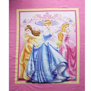 PRINCESSES PANEL - Lg