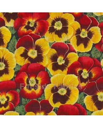 EMMA'S FLOWERS - PANSY - RED (1 Left)