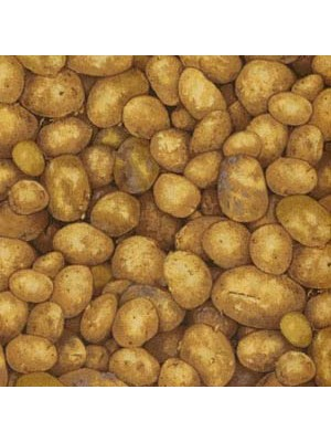 POTATOES (1 Left)