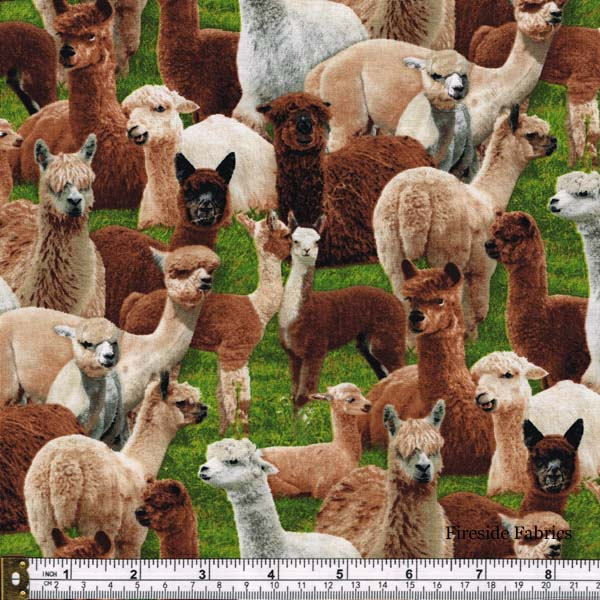 FARM ANIMALS - ALPACA