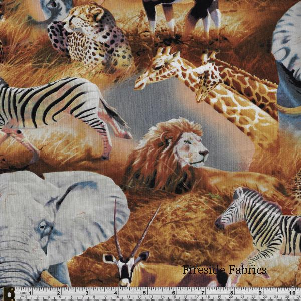 KENYAN PLAINS - ANIMALS