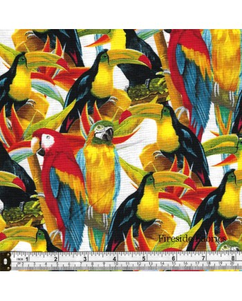 BIRDS IN PARADISE - MULTI