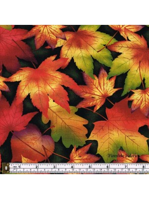 AUTUMN TIME - LEAVES