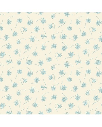 BLUE BIRD - PAPER WHITES - ICE CAVE