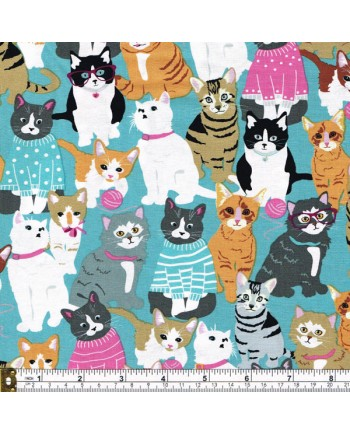 CATTITUDE - DRESSED CATS - TURQ