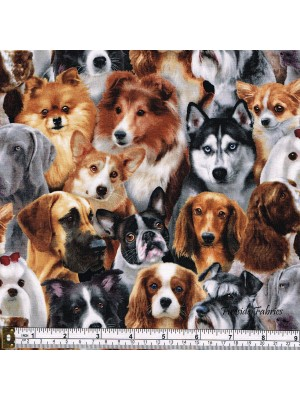 DOG BREEDS - CROWD - MULTI