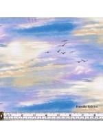 LANDSCAPE - SKY