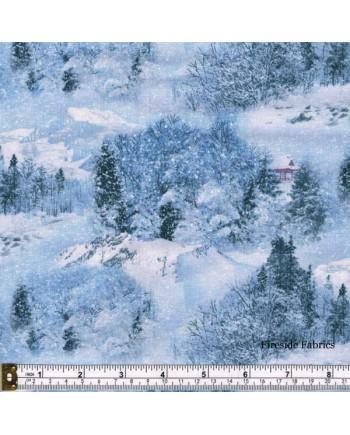 LANDSCAPE MEDLEY - SNOW