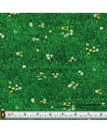LANDSCAPE MEDLEY - GRASS WITH DAISIES