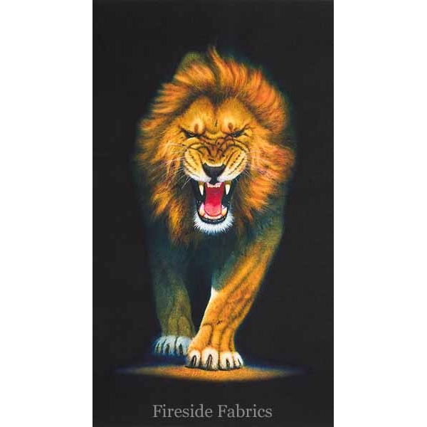 ANIMAL KINGDOM WILD - LION