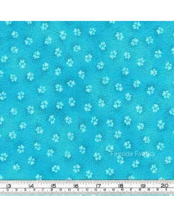 DOGS & DOGGIES - PAW PRINT - AQUA