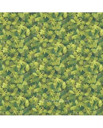LANDSCAPES - LEAVES - GREEN