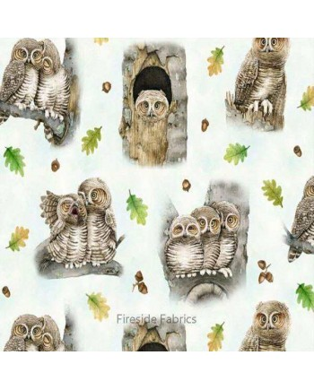 Hoo's Tree - Owls