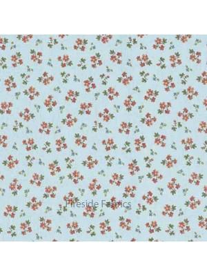 ALISON'S FLOWERS - FORGET ME NOT - ORANGE