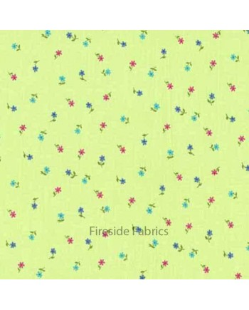 ALISONS FLOWERS - SPACED DAISY - GREEN