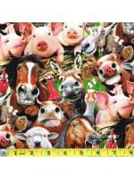 FARM SELFIES - CROWD - ANIMALS