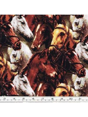 WORLD OF HORSES - CROWD