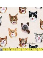 PET SELFIES - CATS