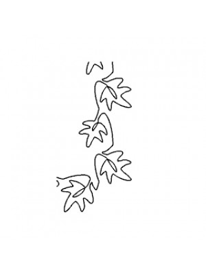 "QUILTING STENCIL - LEAVES BORDER 3"" (7.6CM) WIDE"