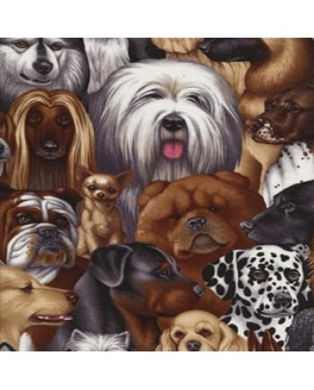 DOGS - MULTI
